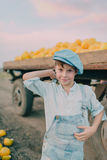 Boy in a cart with yellow melons Royalty Free Stock Photo