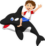 Boy cartoon riding orca Stock Photography