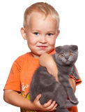 Boy with cat. Child with lop-eared cat isolated on white Stock Photos