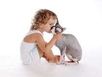 Boy and Cat 3 Royalty Free Stock Photo