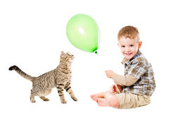 Boy and cat  play balloon Stock Photography