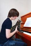 Boy and cat play piano Stock Images