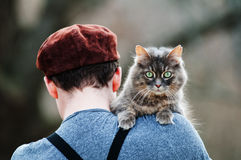 A boy and a cat Stock Images