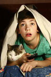 Boy with cat  watch horror movie Stock Photography