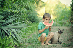 Boy and cat Stock Image