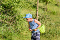 Boy with Catcher Net Looking for Insects to Catch Stock Photo