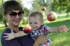 Boy catches an apple Stock Photos