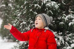 The boy catches snow on the palm. Outdoor. Winter. Snow royalty free stock image