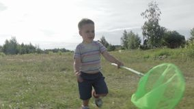 The boy is catching butterflies with a butterfly net. stock video