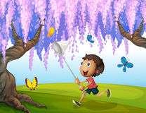 A boy catching butterflies at the park Stock Images