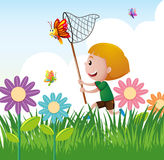Boy catching butterfly in the garden. Illustration Royalty Free Stock Image