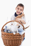 Boy with cats Stock Photography