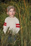 Boy and Cattails. A boy standing in cattails along the road stock photography