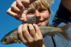 Boy caught grayling Royalty Free Stock Photos