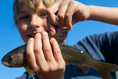 Boy caught grayling Royalty Free Stock Image