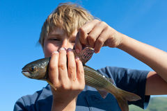 Boy caught grayling Stock Photography