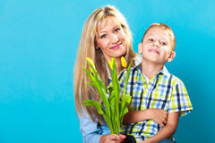 Boy celebrating mother's day. Little child lad giving flowers yellow tulips to his mom mother studio shot on blue Royalty Free Stock Images