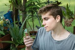Boy and Chameleon Stock Image