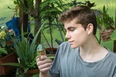 Boy and Chameleon Stock Image