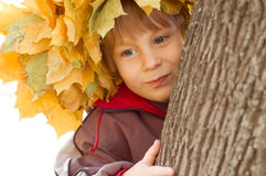 Boy with chaplet of yellow leaves Stock Photography