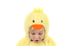 Boy in a chicken costume holding a sign Royalty Free Stock Photography