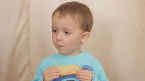 Boy child eating cookies. stock video footage