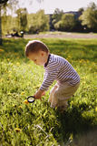 Boy child magnifying glass exploring meadow Royalty Free Stock Image