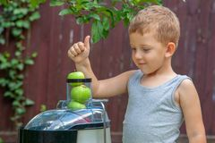 Boy child makes juice from green apples in juicer outdoors royalty free stock photography