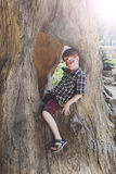 Boy child outdoors sit in tree with butterfly face painting. Small boy full-length portrait with funny face art painting. Male child sit in big old tree with royalty free stock photography