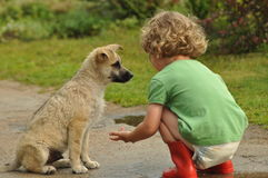 Boy, child in red rubber Wellingtons talking with the puppy. Childhood in diapers. Royalty Free Stock Image