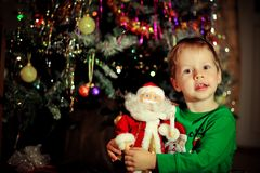 Boy and a Christmas tree Stock Images