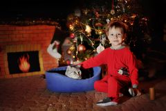 Boy and a Christmas tree Stock Photography