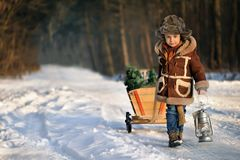 Boy with a Christmas tree in the winter forest.