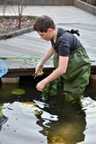 Boy cleaning garden pond Royalty Free Stock Photos