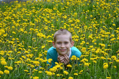 The boy on a clearing from dandelions Stock Photography