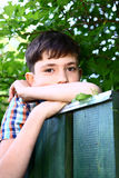 Boy climb green garden fence. On summer holiday stock photo