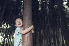 Boy climb up tree. Chinese boy climb up tree with laugh in forest Royalty Free Stock Photography