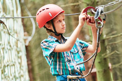 Boy at climbing activity in high wire forest park royalty free stock image