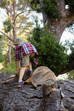 Boy climbing on the fallen tree trunk in forest. Rear view of boy climbing on the fallen tree trunk in forest Royalty Free Stock Images