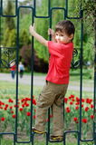 Boy climbing fence Royalty Free Stock Photo