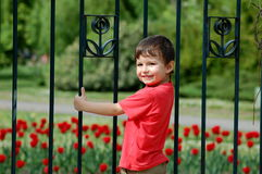 Boy climbing fence Stock Photos