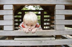 Boy on climbing frame Royalty Free Stock Image