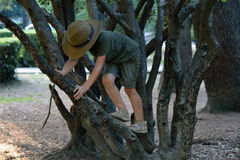 A boy climbing off the tree Royalty Free Stock Photography