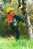 Boy climbing in a tree. Boy with yellow cap climbing in a tree Stock Photos
