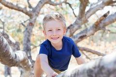 Boy climbing the tree Royalty Free Stock Image