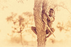 Boy climbing tree Stock Images