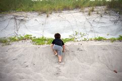 Boy climbing up at the beach Stock Photography