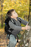 Boy climbing up on tree Stock Images