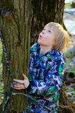 A boy climbs on a tree. In the spring forest Stock Images