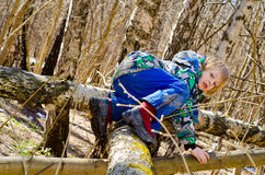 A boy climbs on a tree Royalty Free Stock Photography